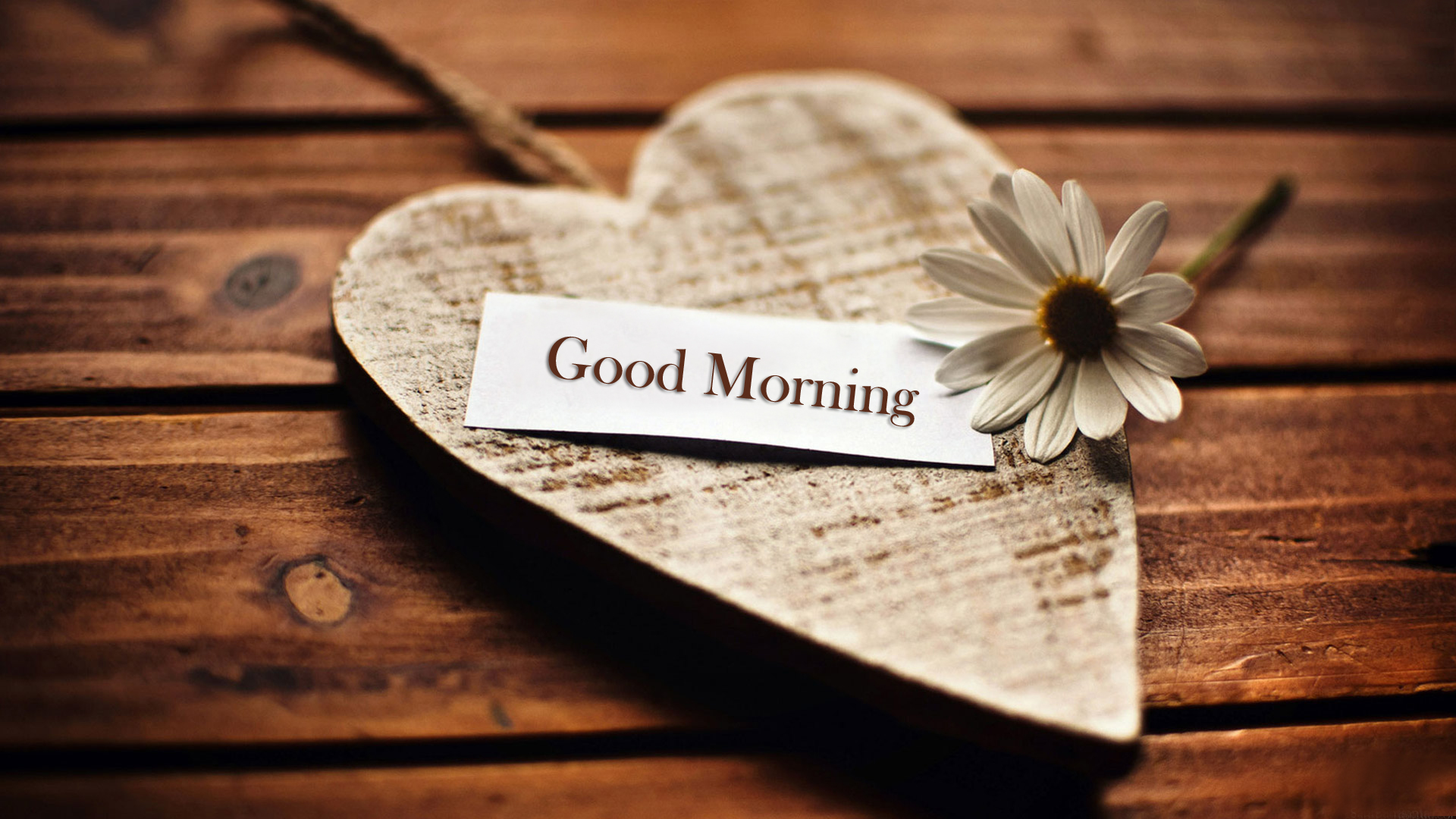 Love Good Morning Image Wallpaper : Good Morning - Images Details - UK