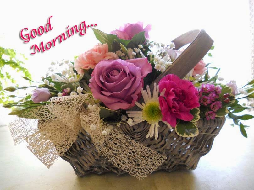 Good Morning Flower Images For Girlfriend Or Boyfriend