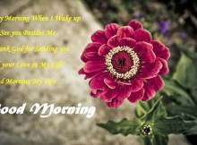 good-morning-images-with-flowers