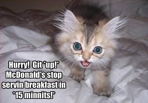 Funny_Good_morning_pics