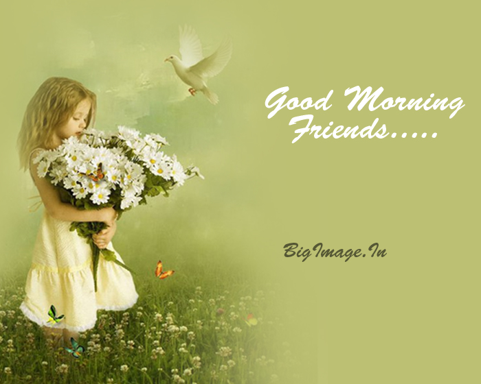 Good Morning Greetings Images and Messages