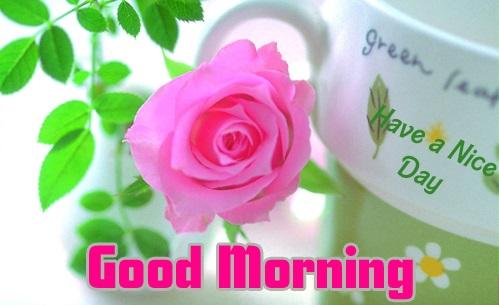 Latest-Good-Morning-wishes-images