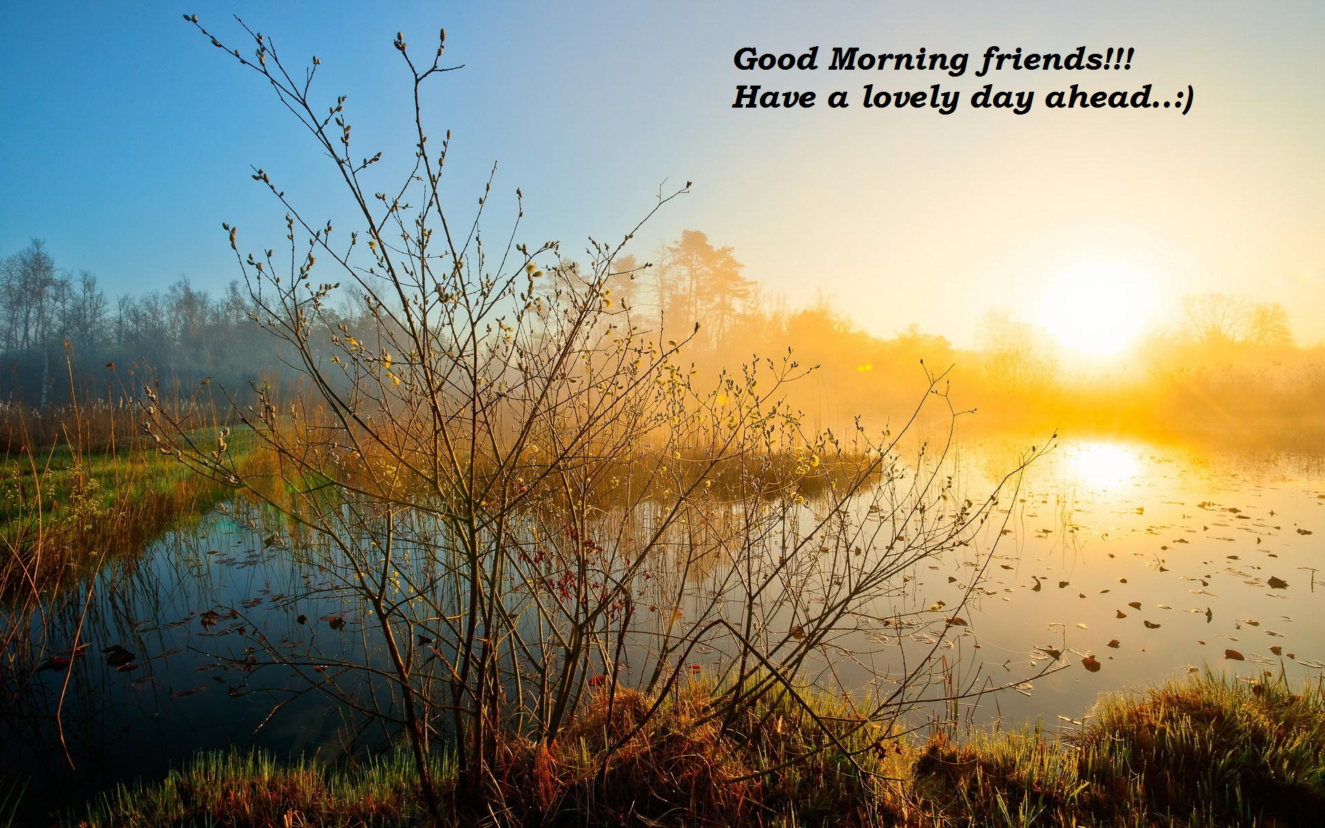 Good Morning images download for free images