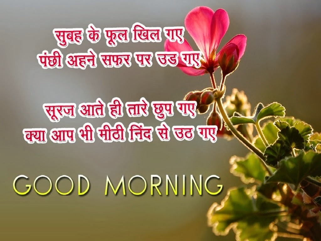 Good Wishes Quotes Good Morning Wishes In Hindi With Images And Pictures